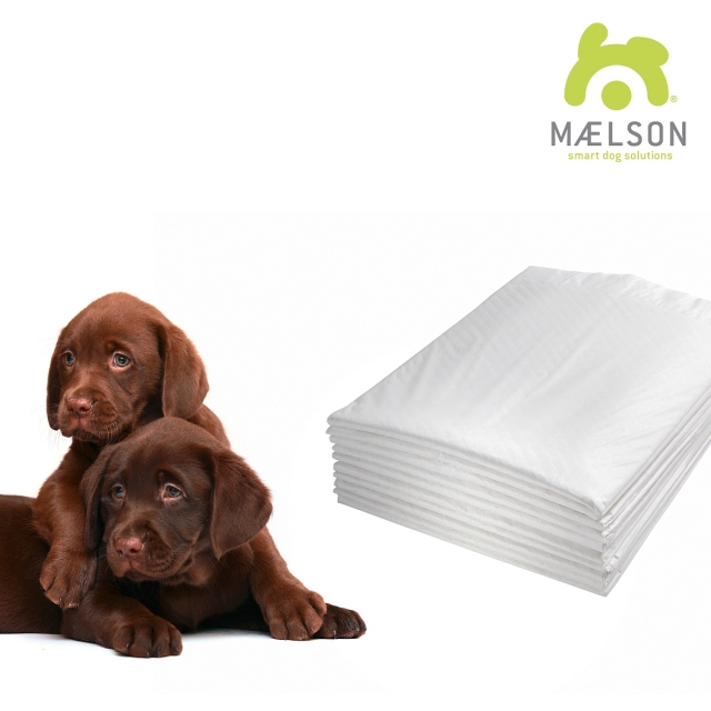 Maelson Doggie Pad